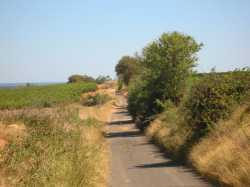 chemin de l'Extasia