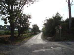 Chemin de Montagnac