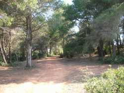 le sentiers de CASTELNAU