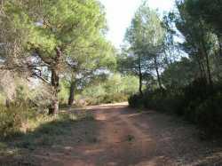 Le sentiers des mulets