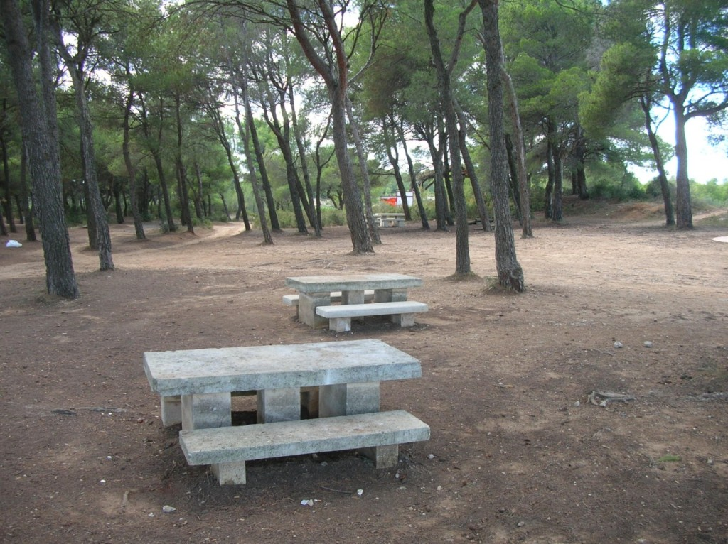 l'aire de picnic de la VALLONGUE