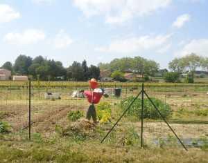 Avril 2001 ---- Les Jardins Familiaux ont investi