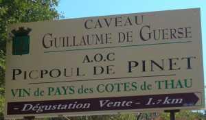 Domaine GUILLAUME de GUERSE