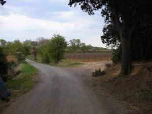 Chemin de Baresse