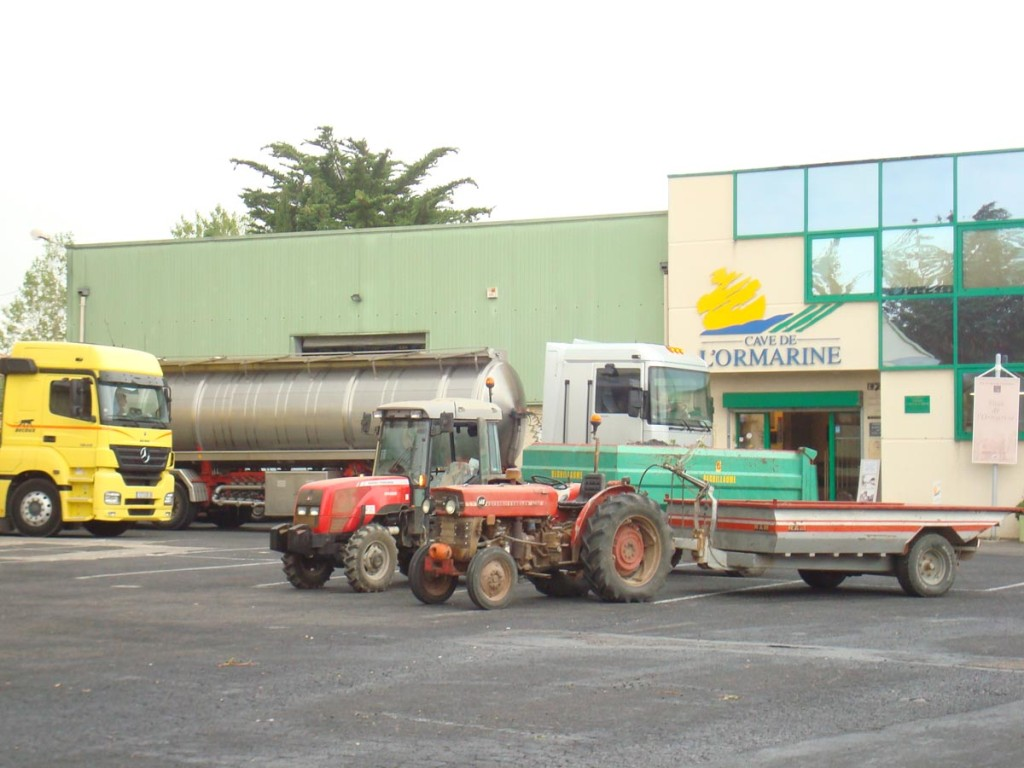Vendanges 2009