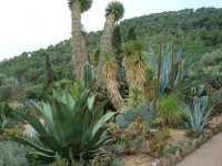 visite du Jardin botanique de PINYA de ROSA Commune de BLANES