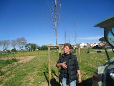 les jardins familiaux ---- Patricia THIEVIN
