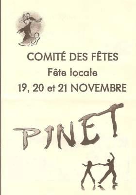 Photo-titre pour cet album: Fête d'Hiver à PINET du 19 au 21 Novembre 2010