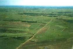 la voie romaine vue d'avion entre Pinet et Loupian (9 kms)